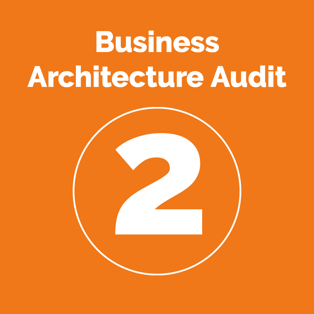 Step 2: The Business Architecture Audit