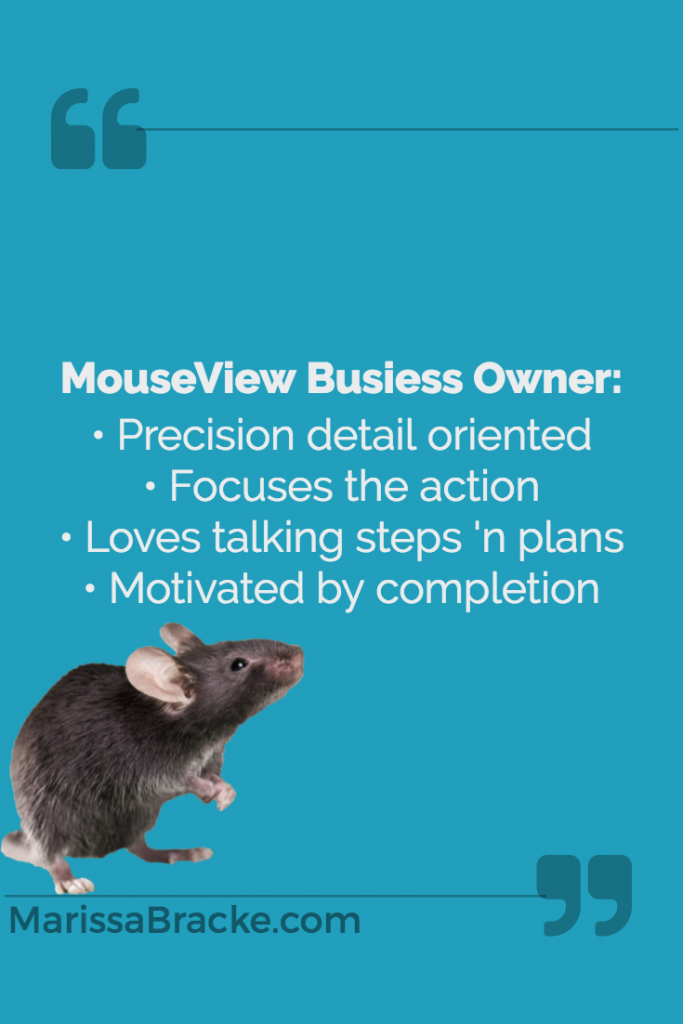 MouseView Business Owners