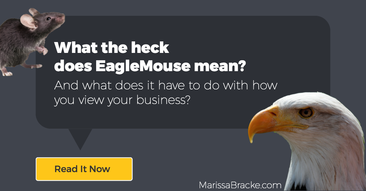 What the heck does EagleMouse mean?